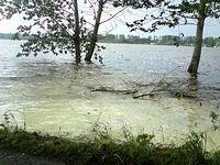 Jezioro Przeczyckie 2010.05.22