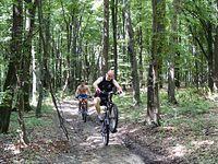 Na początek las w Słocinie- Mateusz się popisuje;)