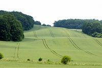 Wzgórza Trzebnickie II