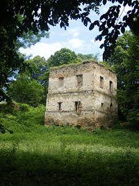 Ruiny zamku Kmitów w Dąbrówce Starzeńskiej