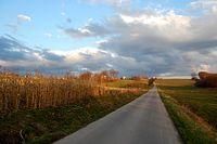 droga, krajobraz, dębno