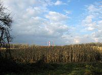 Morysin - kominy elektrociepłowni wskazują północ