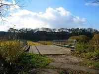 Mostek nad strumieniem, dopływem Potoku Służewieckiego