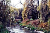 Park Sielecki (rzeka Czarna Przemsza)