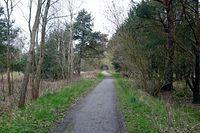 las, droga rowerowa, dawna trasa kolejki