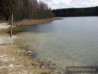 Czysta woda nad Jeziorem Miejskim w Okońcu.