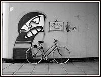 Koza. Grafitti. Szczecin.