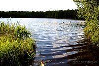 """Nad tym jeziorem nagrywano sceny do filmu """"Krzyżacy""""."""