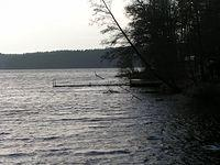 Mroczne wody jeziora Stoczek w Krówce Leśnej