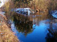 Ujście Kanału Zaborowskiego do Łasicy