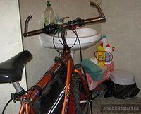 2 Morsy pilnują mi roweru! ;D