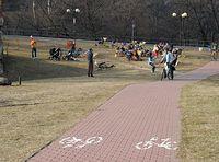 Ścieżka rowerowa przy ul. Oboźnej