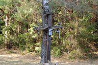 Krzyż w lesie przy Carskiej drodze