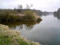 Ujście rzeki Stobrawy do Odry