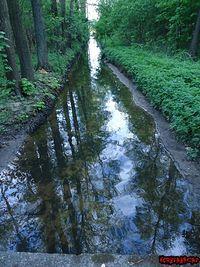 Sztuczny kanał idący od jeziora Rybnica