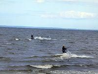 Na zdjeciu nie widać fruwających żagli ale za to dobrze widać windsurfingowców.