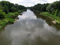 Rzeka Warta w Biedrusku