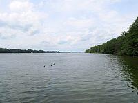 Jezioro Kierskie jest nawet spore