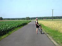 Letnie krajobrazy we wsi Kołata