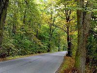 Droga do Šilheřovic