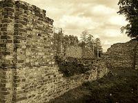 Ruiny w Łosiej Wólce