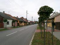 drewniana zabudowa wzdłuż drogi 48 w Wyśmierzycach