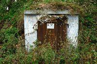 Piwniczka opuszczonego gospodarstwa, wiele takich w Puszczy-miejsce  zimowania nietoperzy
