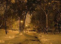 Ursynów - październikowa nocna alejka