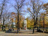 Park w centrum Drzewicy