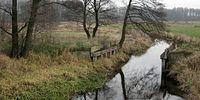 Pozostałości po starym moście w Witulinie