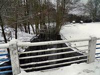 Z mostku nad rzeką Gunica, tuż za Tanowem.