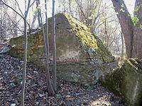 Ruiny dworu w Domasłowicach