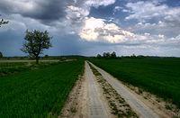 Droga z płyt jumbo z Golczewa do Giżynka