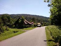 Wieś Nasiczne