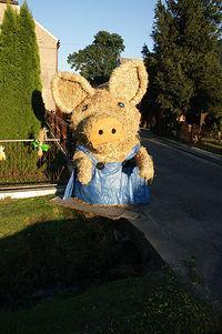 Dożynkowa świnka w Zalesiu Ślaskim