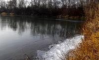 Polasek i cienka warstwa lodu