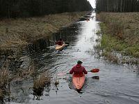 Kajakarze na kanale Łasica