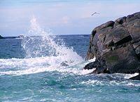 Wrażenia z wyspy Karmøy