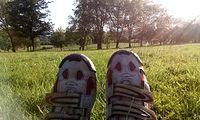 Odpoczynek na trawce