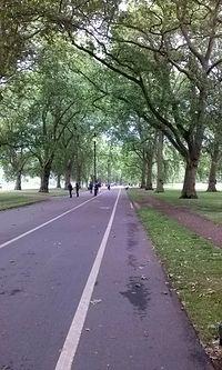 Ścieżka dla rowerzystów Hyde Park