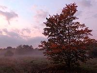 Jesienny zachód (1)