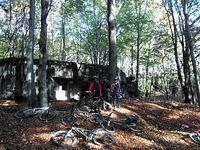 Kolejny bunkier w lesie