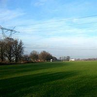 Fabryka trawy Roll-traw