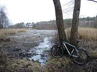 Jezioro Hamrzyskie - w tle Dworek Myśliwski w Gniewomierzu