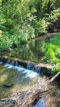 Próg wodny na Jawoniku