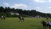Jakieś zawody jeździeckie w okolicy Gorzyczek