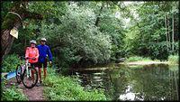 Rzeka Skrwa w Brudzeńskim Parku Krajobrazowym