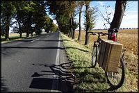 Transport wielkogabarytowy rowerem ;)