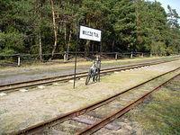 Wilcze Tułowskie - stacja kolejką wąskotorowej (linia Sochaczew - Wilcze Tułowskie)