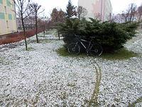 Śnieg postraszył
